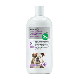 Anti-Bacterial Anti-Fungal Shampoo - Lavender Scent - S for Medicated Shampoo | GNC