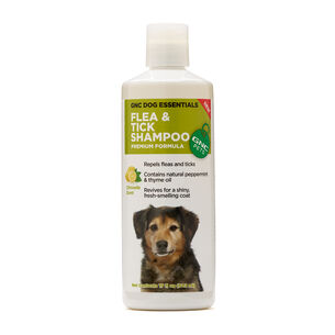 GNC Dog Essentials Flea & Tick Shampoo - Citronella Scent | GNC