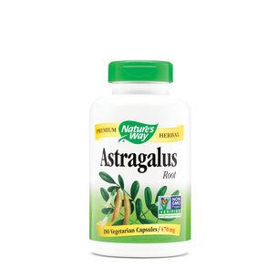 Astragalus Root | GNC