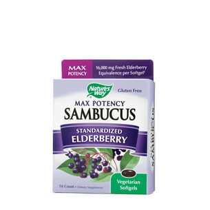 Sambucus Max Potency  - Standardized Elderberry Syrup | GNC
