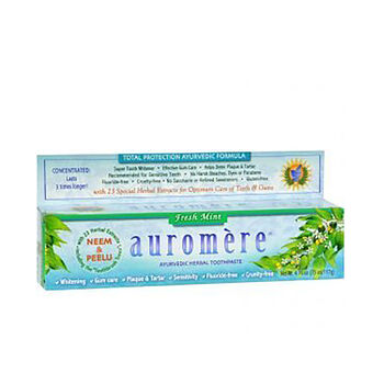 Ayurvedic Herbal Toothpaste Fresh Mint | GNC