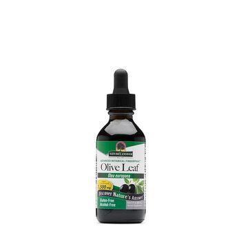 Oleopein Olive Leaf 1,500 mg | GNC