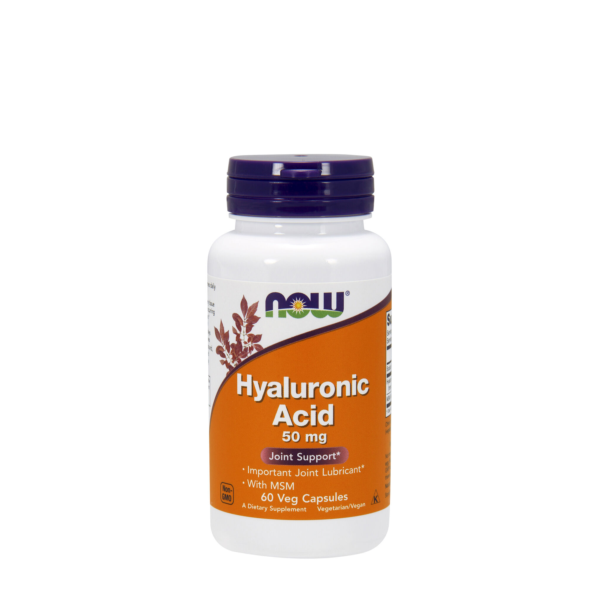Now® Hyaluronic Acid Joint Support with MSM